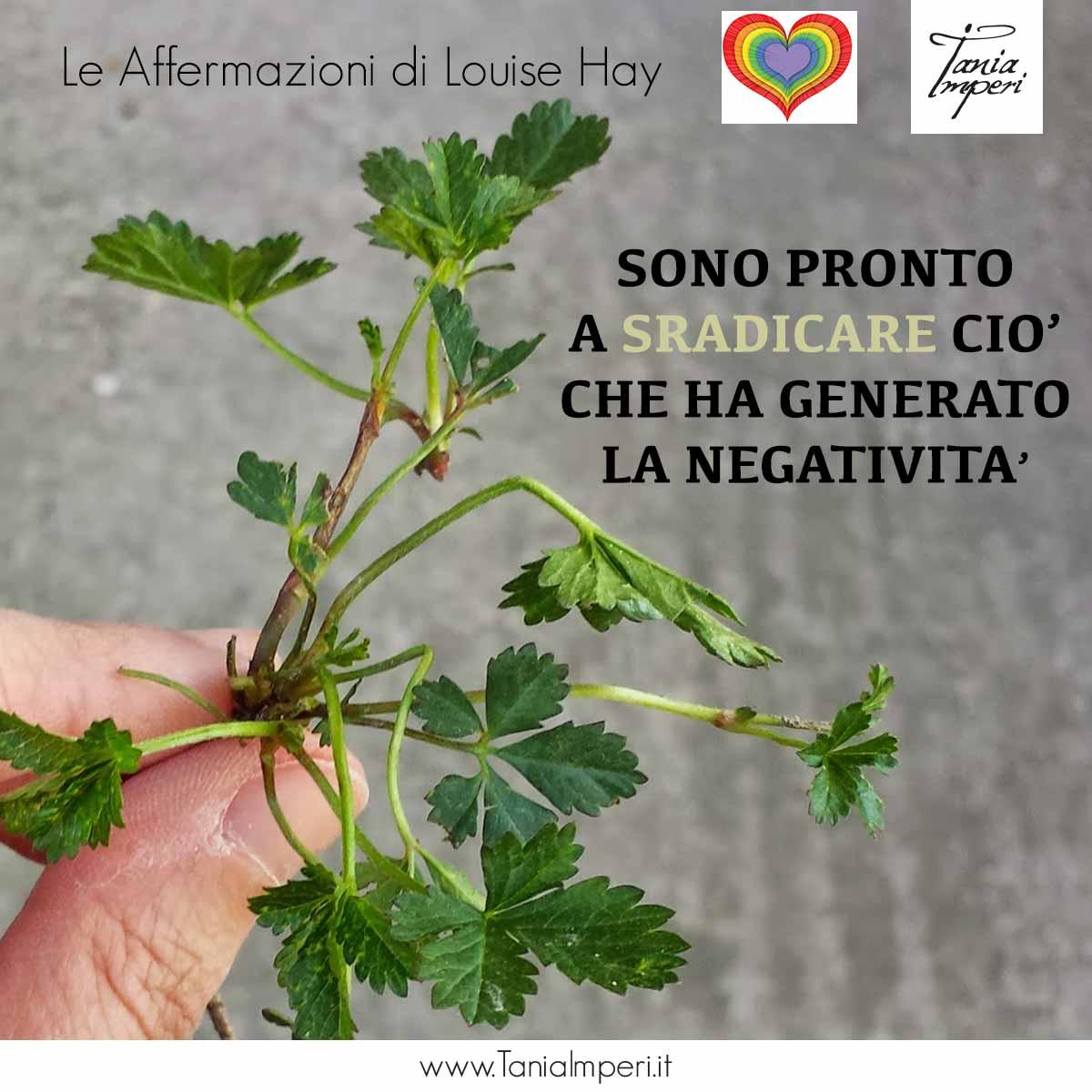 AFFERMAZIONI-DI-LOUISE-HAY-51-SONO-PROTO-A-SRADICARE-CIO'-CHE-HA.GENERATO-LA-NEGATIVITA'--19NOV2016